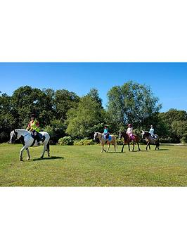 Virgin Experience Days Introduction To Horse Riding For Two In The New Forest, Hampshire