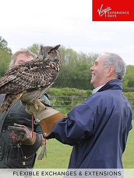 Virgin Experience Days Virgin Experience Days Falconry Taster At A Choice  ... Picture