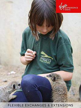 virgin-experience-days-meet-and-feed-the-meerkats-for-two-at-millets-falconry-centre-oxfordshire