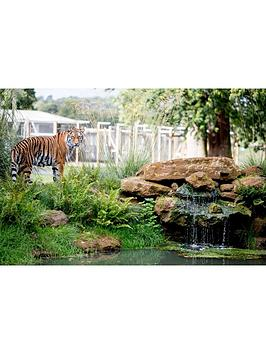 Virgin Experience Days Virgin Experience Days Up-Close Tiger Encounter For  ... Picture