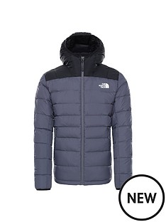the-north-face-lapaz-hooded-jacket-grey