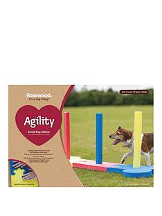 rosewood-agility-slalom-outdoor-pet-activity