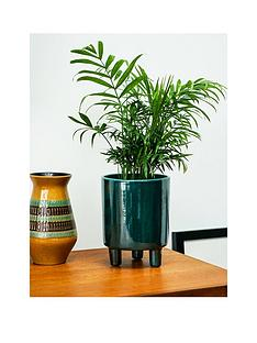 ivyline-pisa-emerald-planter
