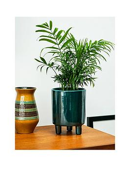 ivyline-pisa-emerald-planter