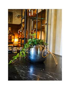 ivyline-real-silver-ivy-plant-in-hanging-pot