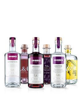 virgin-wines-6-gin-selection