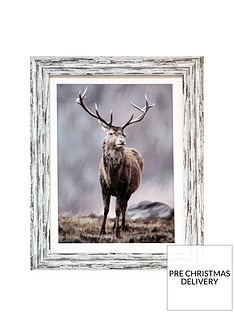 arthouse-highland-stag-framed-print