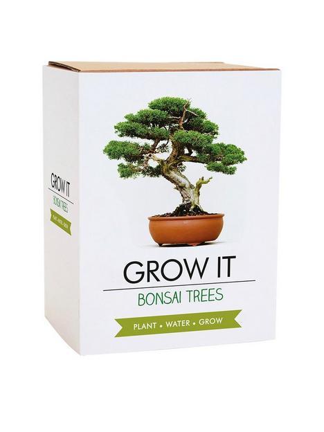 gift-republic-bonsai-tree-plant-grow-it