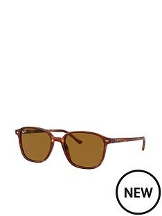 ray-ban-round-sunglasses-stripednbsphavana