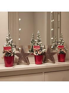 set-of-3-tabletop-snowy-christmas-trees-25cm-tall
