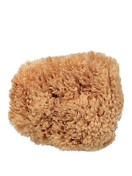beauty-kitchen-the-sustainables-eco-harvested-body-sea-sponge