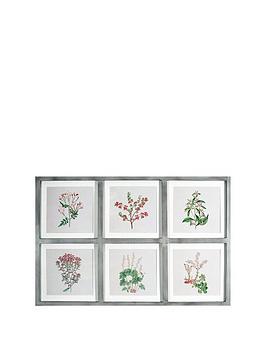 arthouse-botanical-multi-aperture-framed-print