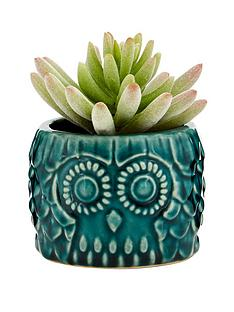 premier-housewares-small-succulent-in-blue-ceramic-owl-pot