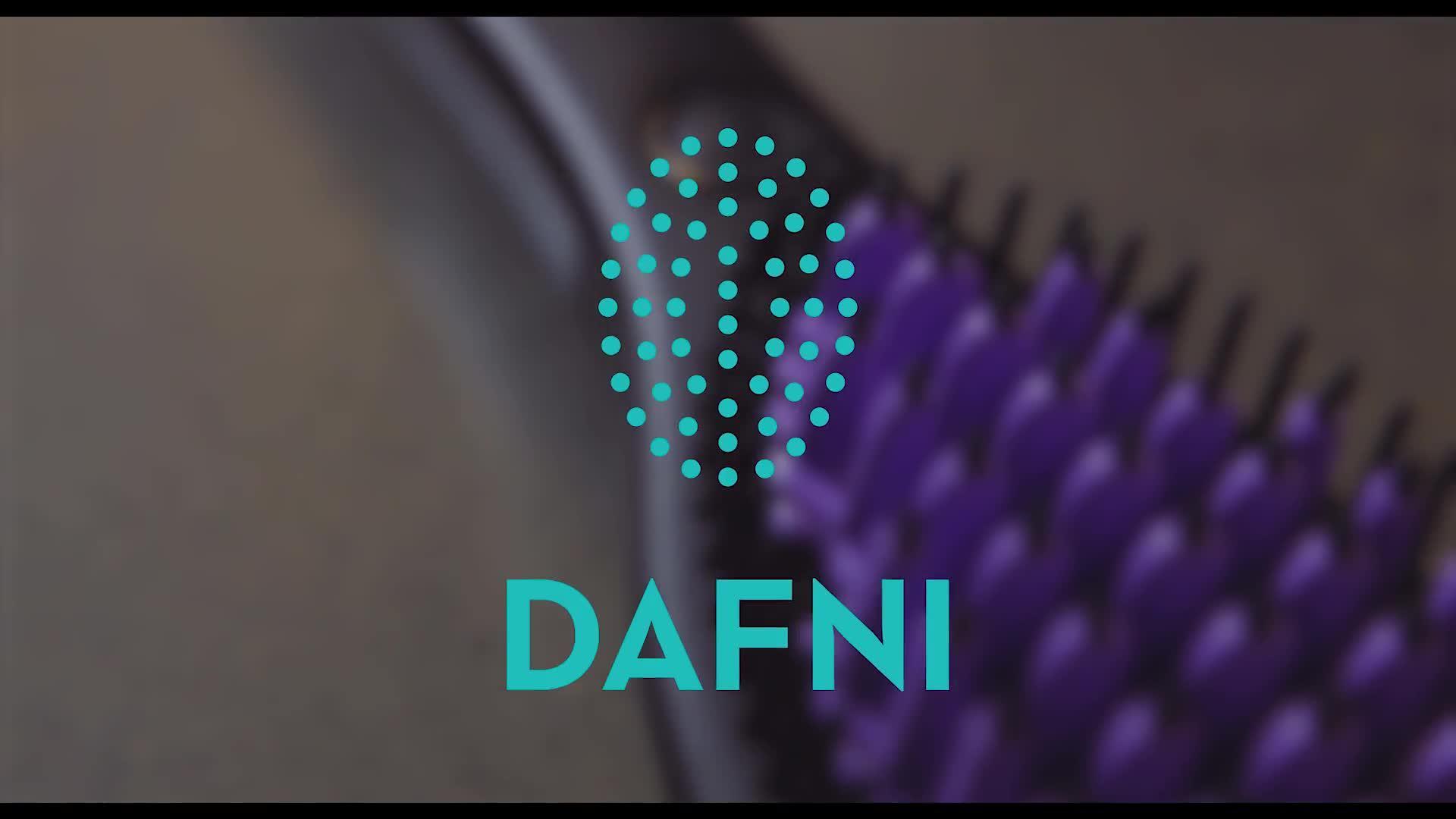 Dafni The Dafni Hair Straightening Brush Littlewoods